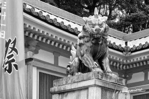 Kyoto en Noir et Blanc- DSC2093-Edit (1)