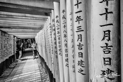 Kyoto en Noir et Blanc- ELA0661-Edit (1)