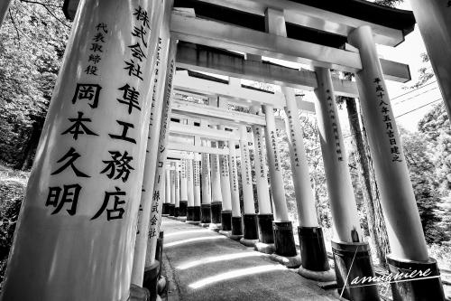 Kyoto en Noir et Blanc- ELA0696-Edit-Edit (1)