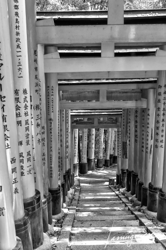Kyoto en Noir et Blanc- ELA0732-Edit (1)