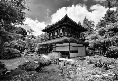 Kyoto en Noir et Blanc- ELA0869-Edit (1)