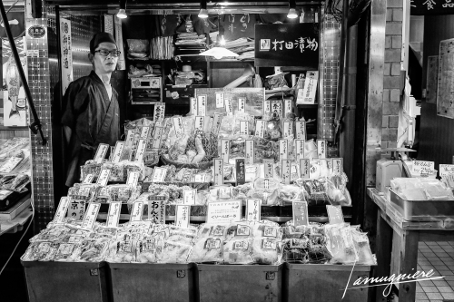 Kyoto en Noir et Blanc- ELA1046-Edit