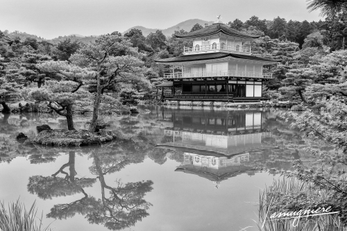 Kyoto en Noir et Blanc- ELA1386-Edit-Edit (1)