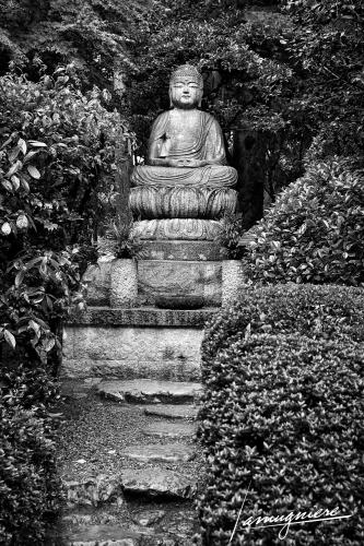 Kyoto en Noir et Blanc- ELA1449-Edit (1)