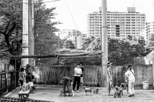 Tokyo noir et blanc- DSF2324-Edit