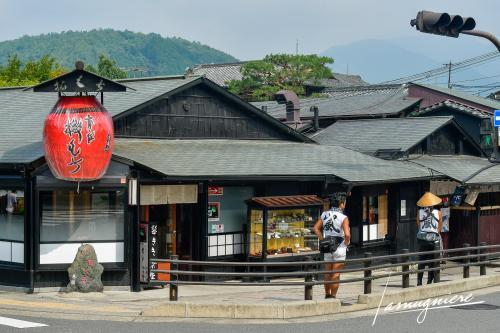 monkey park iwatayama kyoto- ELA1109
